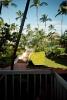 Доминикана. Вид с балкона отеля Barcelo Punta Cana