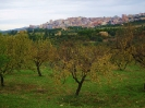 Италия. Сицилия. Агридженто